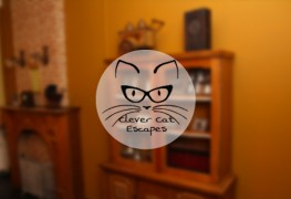 escape-room-clever-cat-escapes-haarlem