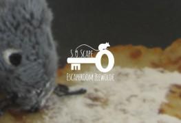 escaperoom-soscape-zeewolde-2