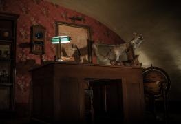 Recherche Escape Rooms Escape Room Overzicht